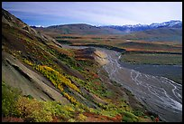 Braided river from Polychrome Pass, morning. Denali National Park, Alaska, USA.