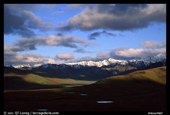 Alaska Range and clouds from Polychrome Pass, evening. Denali National Park (color)