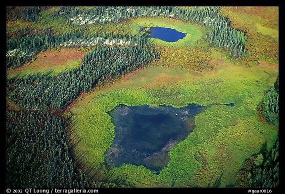 Aerial view of lake, tundra and taiga. Gates of the Arctic National Park (color)