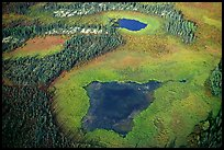 Aerial view of lake, tundra and taiga. Gates of the Arctic National Park, Alaska, USA.