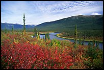 Alatna River valley near Circle Lake. Gates of the Arctic National Park, Alaska, USA.