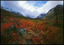 Arrigetch Peaks, tundra in fall colors, and clearing storm. Gates of the Arctic National Park ( color)