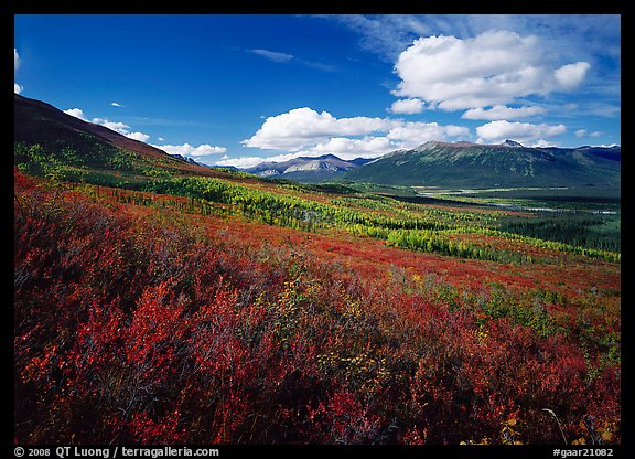 Alatna River valley. Gates of the Arctic National Park (color)