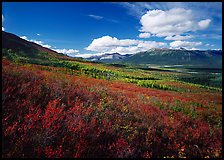 Alatna River valley. Gates of the Arctic National Park, Alaska, USA.