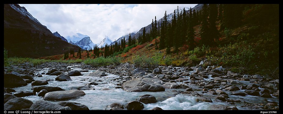 Taiga scenery with stream. Gates of the Arctic National Park (color)