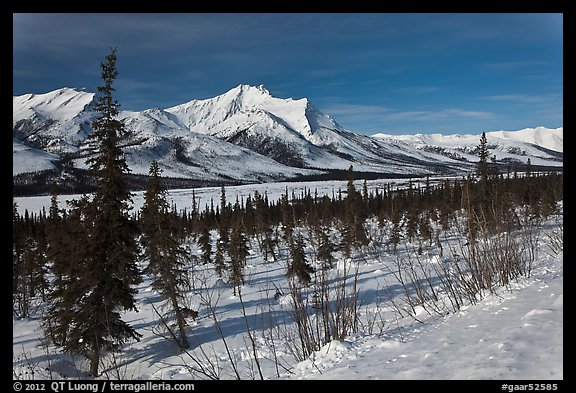 Winter landscape. Gates of the Arctic National Park (color)