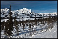 Winter landscape. Gates of the Arctic National Park, Alaska, USA. (color)