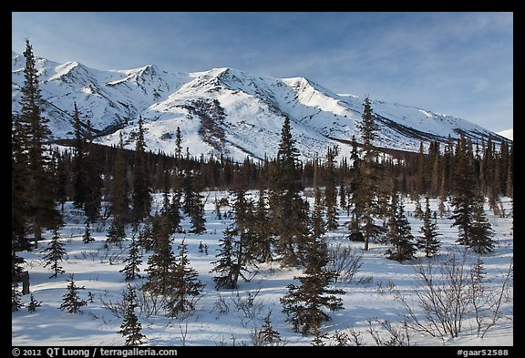 Boreal forest and brooks range in winter. Gates of the Arctic National Park (color)