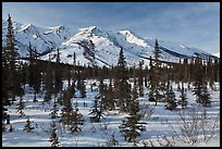 Boreal forest and brooks range in winter. Gates of the Arctic National Park, Alaska, USA. (color)