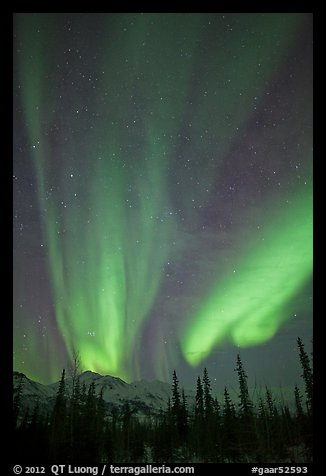 Northern lights over Brooks Range mountains. Gates of the Arctic National Park, Alaska, USA.