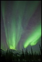 Northern lights over Brooks Range mountains. Gates of the Arctic National Park ( color)