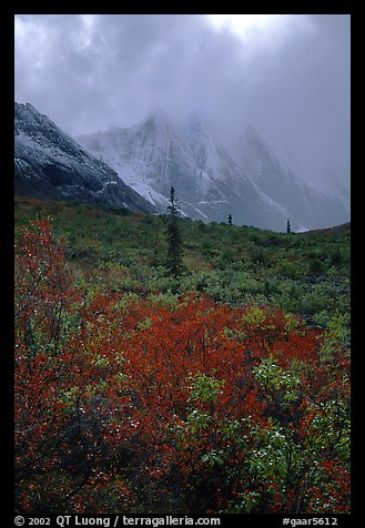 Tundra and Arrigetch Peaks in fog. Gates of the Arctic National Park, Alaska, USA.