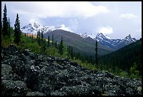 Arrigetch Peaks from boulder field in Arrigetch Creek. Gates of the Arctic National Park, Alaska, USA. (color)
