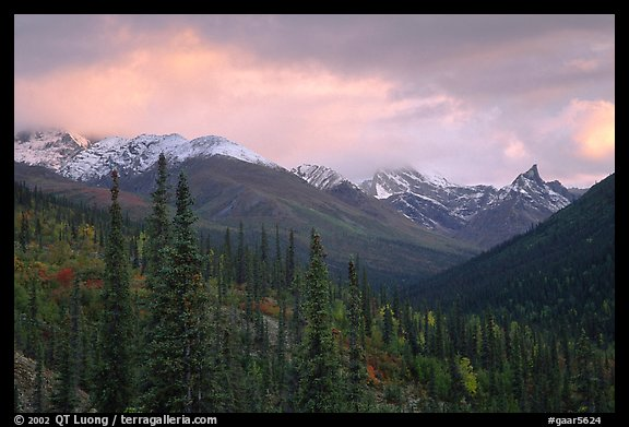 Arrigetch Peaks from Arrigetch Creek entrance at sunset. Gates of the Arctic National Park, Alaska, USA.