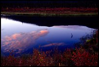 Alatna River reflections, sunset. Gates of the Arctic National Park, Alaska, USA.