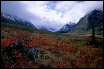 Arrigetch Peaks, tundra in fall colors, and clearing storm. Gates of the Arctic National Park, Alaska, USA.