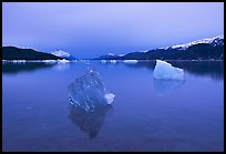 Translucent iceberg near Mc Bride glacier, Muir inlet. Glacier Bay National Park, Alaska, USA.