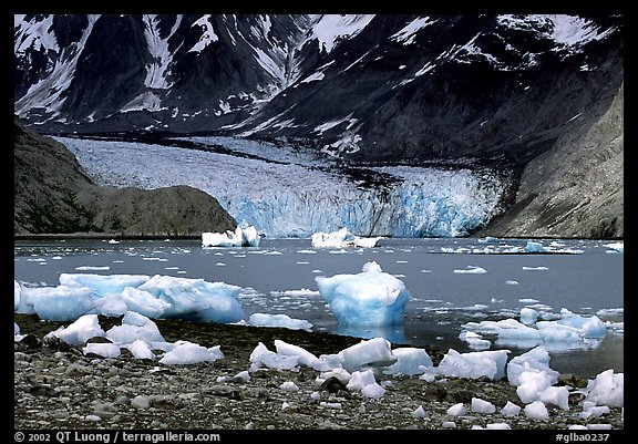 Mc Bride glacier, Muir inlet. Glacier Bay National Park (color)