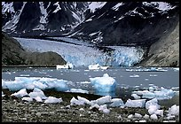 Mc Bride glacier, Muir inlet. Glacier Bay National Park, Alaska, USA.