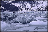 Ice-chocked waters in John Hopkins inlet. Glacier Bay National Park, Alaska, USA. (color)