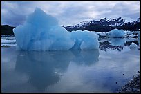Iceberg, Mc Bride inlet. Glacier Bay National Park, Alaska, USA. (color)