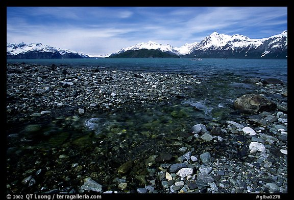 Stream and West arm. Glacier Bay National Park, Alaska, USA.