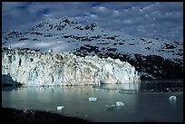 Lamplugh tidewater glacier and Mt Cooper. Glacier Bay National Park ( color)
