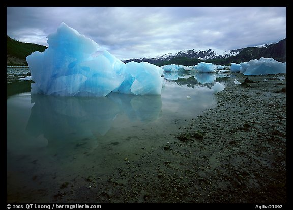 Blue icebergs beached near Mc Bride Glacier. Glacier Bay National Park (color)