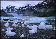 Beached icebergs and McBride Glacier. Glacier Bay National Park ( color)