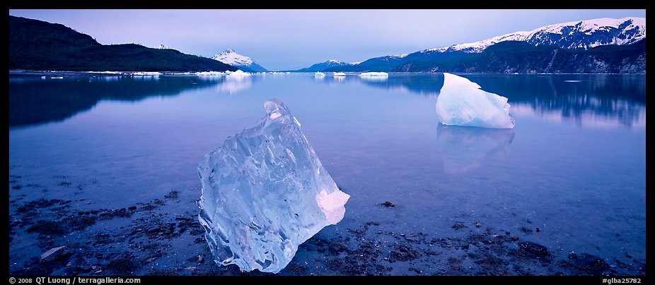 Transluscent iceberg at dawn. Glacier Bay National Park (color)