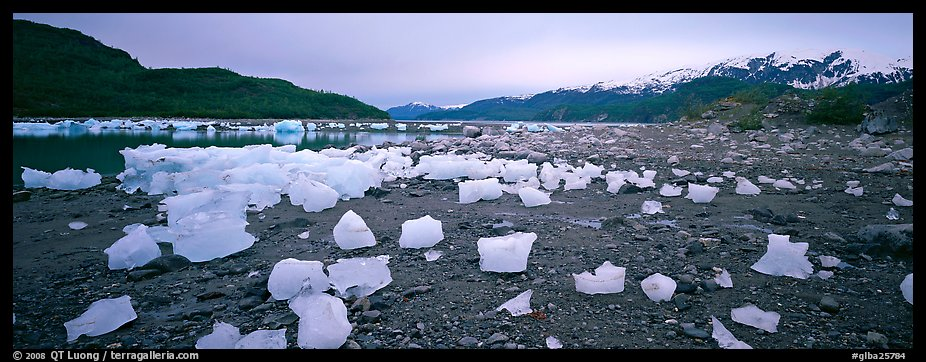 Landscape with beached icebergs. Glacier Bay National Park (color)