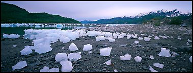 Landscape with beached icebergs. Glacier Bay National Park (Panoramic color)
