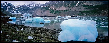 Glacial scenery with icebergs and glacier. Glacier Bay National Park (Panoramic color)