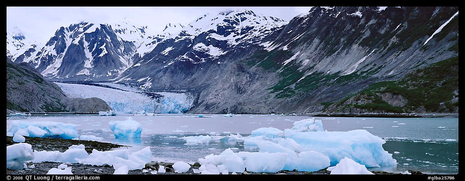 Coastal scenery with icebergs and tidewater glacier. Glacier Bay National Park (color)