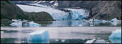 Glacier front and inlet. Glacier Bay National Park (Panoramic color)