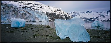 Beach iceberg and tidewater glacier front. Glacier Bay National Park (Panoramic color)