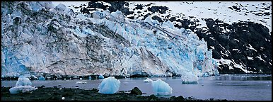 Glacier terminus. Glacier Bay National Park (Panoramic color)