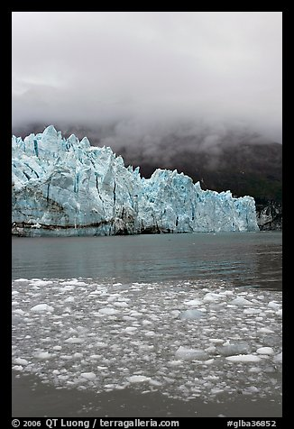 Icebergs, Margerie Glacier, and fog. Glacier Bay National Park, Alaska, USA.