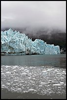 Icebergs, Margerie Glacier, and fog. Glacier Bay National Park ( color)