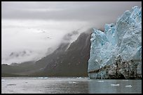 Margerie Glacier and foggy mountains surrounding Tarr Inlet. Glacier Bay National Park ( color)