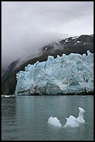 Icerberg at the base of Margerie Glacier. Glacier Bay National Park, Alaska, USA. (color)