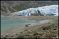 Beach and Reid Glacier. Glacier Bay National Park, Alaska, USA.