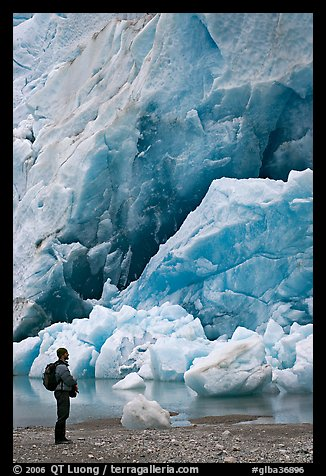 Hiker looking at ice wall at the terminus of Reid Glacier. Glacier Bay National Park, Alaska, USA.