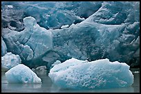Icebergs and blue ice at the base of Reid Glacier. Glacier Bay National Park, Alaska, USA. (color)