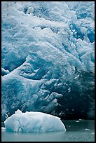 Iceberg and ice cave at the base of Reid Glacier. Glacier Bay National Park, Alaska, USA. (color)