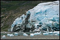 Stranded icebergs on beach and Reid Glacier terminus. Glacier Bay National Park ( color)