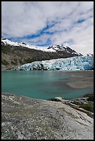 Reid Inlet and Reid Glacier terminus. Glacier Bay National Park, Alaska, USA. (color)