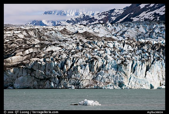 Iceberg and ice face of Lamplugh glacier. Glacier Bay National Park, Alaska, USA.