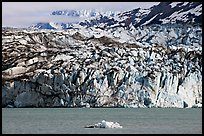 Iceberg and ice face of Lamplugh glacier. Glacier Bay National Park, Alaska, USA. (color)