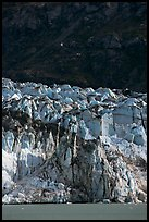 Front of Lamplugh glacier. Glacier Bay National Park ( color)